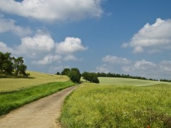 """空に雲ひとつない天気を求めて…。ついに文字通りの""""青天""""が現れた。"""
