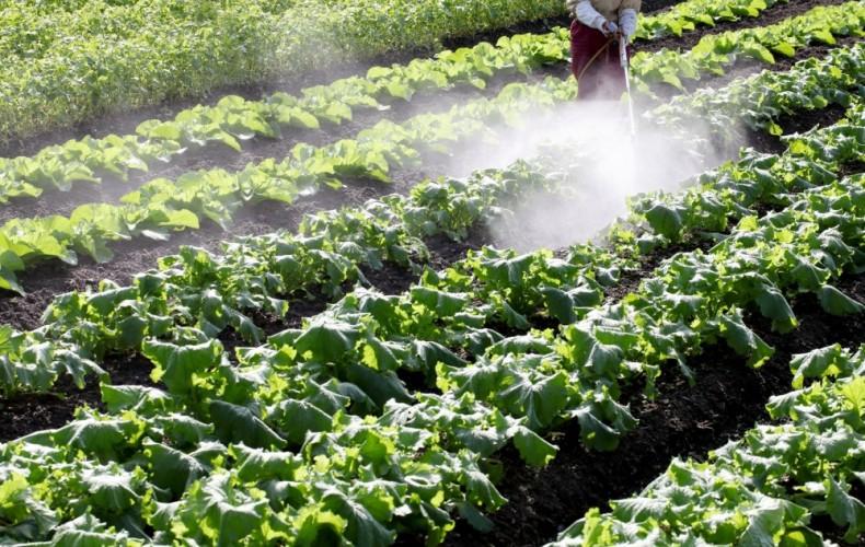 ドローン市場を考えると、これから参入するなら「検査」「農業」である件。